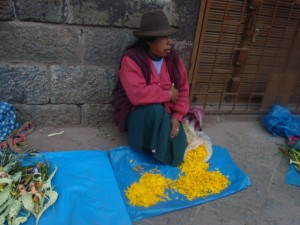 Retama Petals for Holy Week, Cuzco