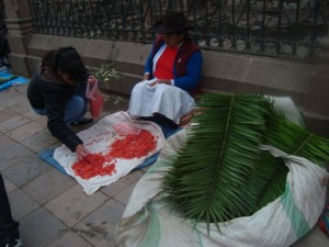 Palm Fronds for Palm Sunday, Cuzco