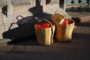 Baskets of Ñuqch'u Flowers