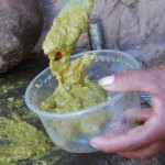 Fresh-Made Llantán (Green Sauce)