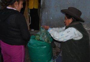 Selling Coca Leaves on the Street