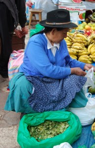 Coca Leaves For Sale on the Market