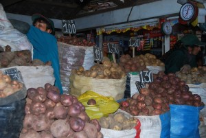 Potato Variety at San Pedro Market