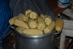 Boiled Corn Ready to Eat