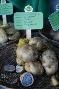 Quicorani Potatoes from Canas