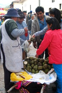 Selling Cherimoya