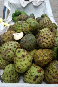 Cherimoya Fruit for Sale
