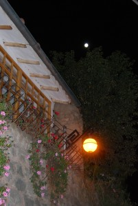Hanging Geraniums and Lamp under Cuzco's Moon