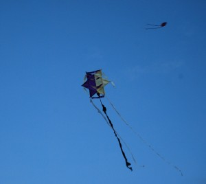 A Handcraft Fly Kites