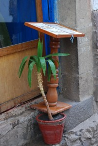 Potted Plant Holding up a Menu Stand