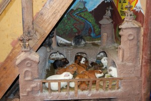 A Home for Guinea Pigs in a Restaurant in Pisac