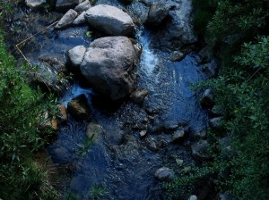 Water Flowing in a Stream near Cuzco