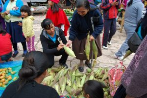 Buying Fresh Corn in Pisac's Market