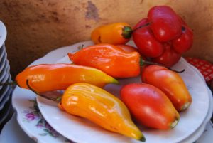 Mirasol Peppers, Red Pepper, and Tree Tomatoes