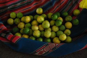 Peru's Great Limes