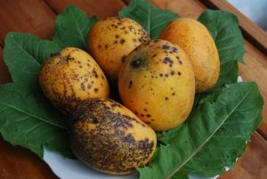 Ripe Mangoes Ready to Eat