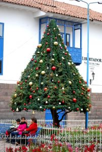 A Decorated Tree by Santo Domingo