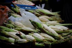 Fresh Corn in the Market