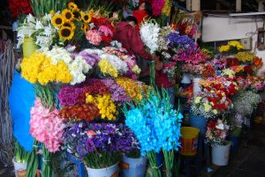 Beautiful Flowers For Sale