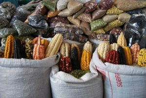 Grains and Beans in the San Pedro Market