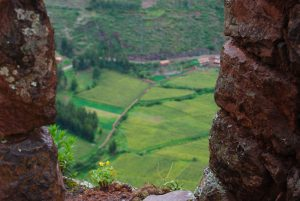 The Fields of Cuzco (Photo: Wayra)