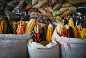 Corn and Other Grains in the Market (Photo: Wayra)
