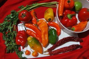 Diverse Hot Peppers in Cuzco