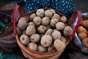 Compis Potato for Sell in the Market (Photo: Wayra)