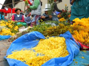 Yellow Flower Petals for New Year's