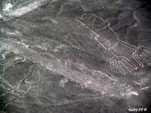 The Nazca Lines Can only Be Seen from the Air (Photo: Gabriela Filgueira).