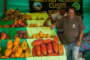 Cacao Pods and other fruit in the Anta Gastronomic Fair (Photo: Walter Coraza Morveli)