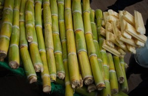 A pile of Sugar Cane in the Street