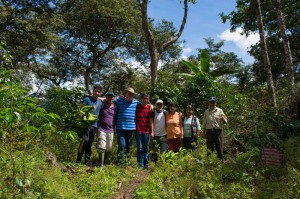 Visiting the Coffee Fields (Wayra)