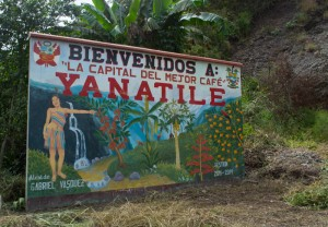 Welcome to Yanatile