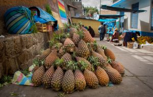 A Mountain of Pineapple Fruit