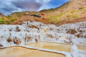 The Salt Ponds of Maras (Walter Coraza Morveli)