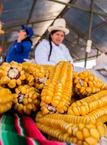 Corn to Exchange in Cuzco (Walter Coraza Morveli)