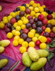 Cuzco's Plums and Tumbo Fruit