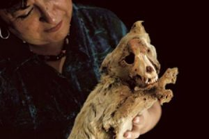 Anthropologist Sonia Guillén and a Mummified Dog