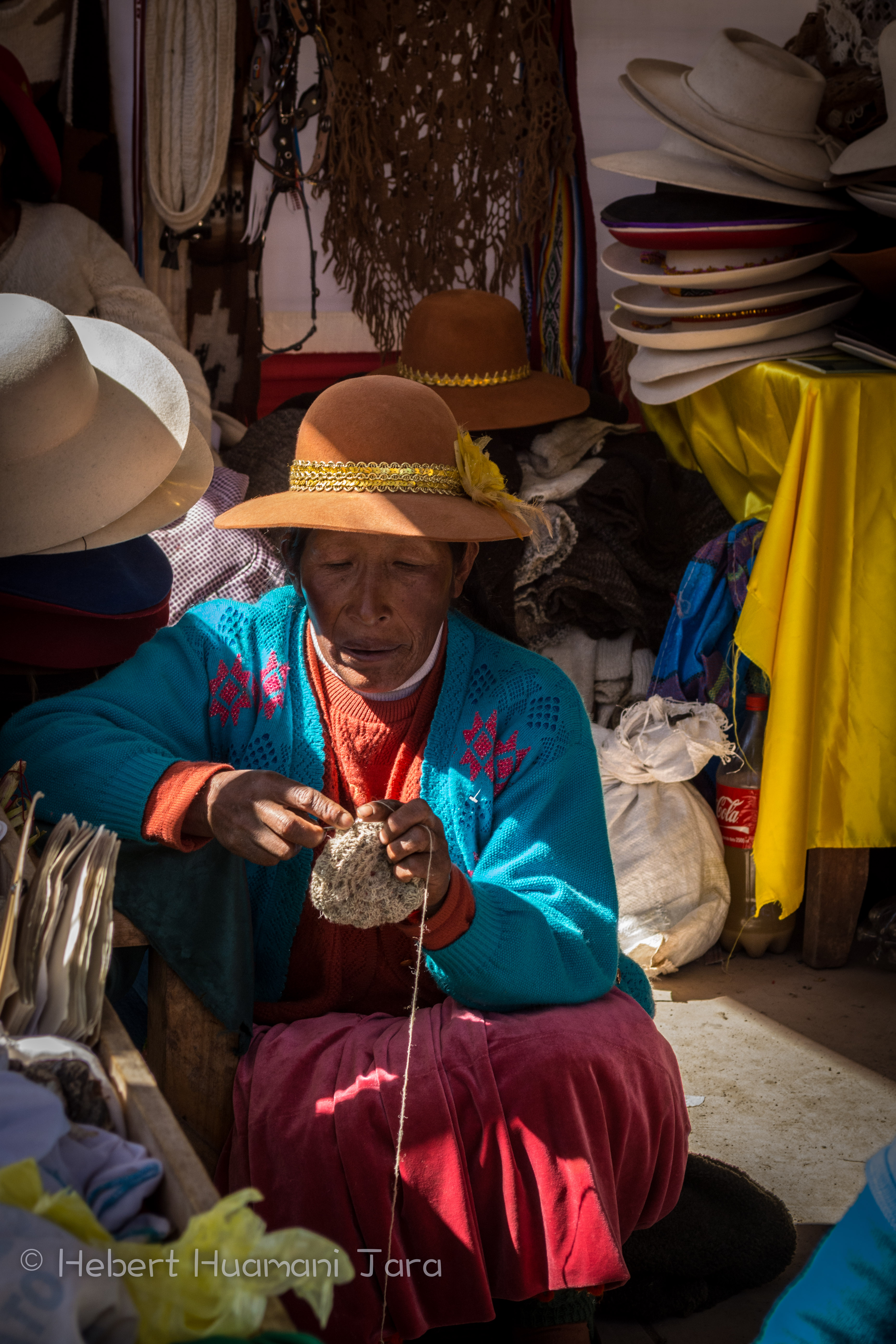A Woman Spinning Wool