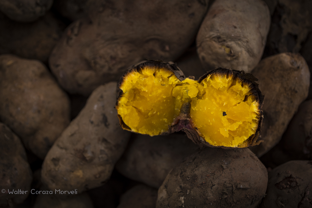 Yellow Potatoes Ready to Eat