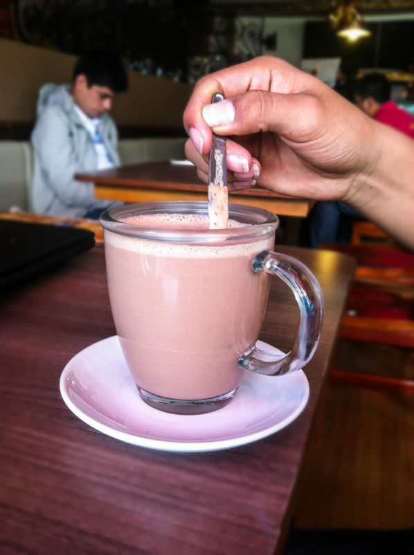 A Delicious and Warming Cup of Hot Chocolate with Milk for the Season (Walter Coraza Morveli)